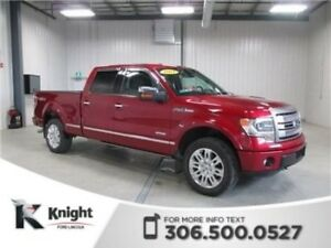 2014 Ford F-150 Platinum Navigation