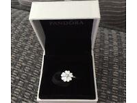 Pandora Primrose Ring