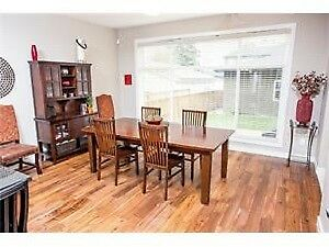 Pier 1 kitchen table and chairs - solid wood!