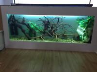 Aquarium and light unit