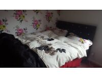 Double room to rent monday to friday only. £75pw allbills included