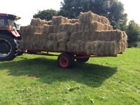 Meadow hay bales for sale.