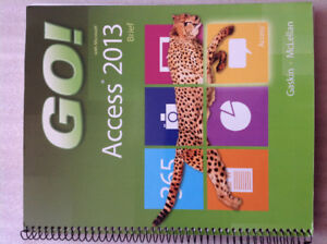 Go with Microsoft access 2013