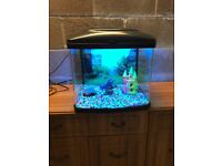 48l fish box fish tank full set up with blue light lid filter colour gravel and ornament all work