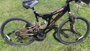 Vélo de montagne (nouveau prix)
