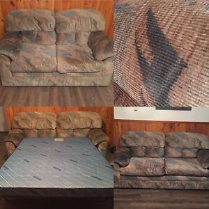 Pull Out Couch & Love Seat