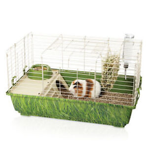 2 Guinnea Pigs, Large Cage & Food