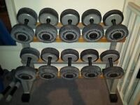 technogym dumbbells weights