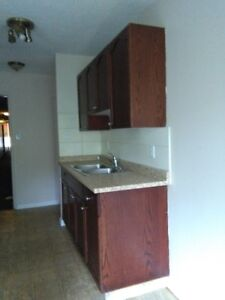 Two bedroom apartment for rent in Downtown 10630-111 Street