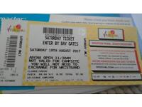 V Festival Day Ticket Weston Park Saturday 19th August