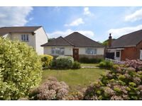 AVAILABLE TO LET MID AUGUST - Bungalow in Parkstone, 2 bedrooms, 2 receptions, good size garden