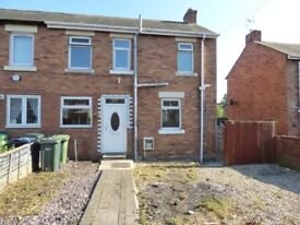 Birtley. 2 Bed Immaculate newly decorated House with front and back gardens.No bond!DSS Welcome!