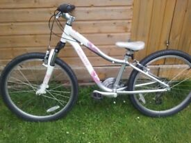 Childs Specialized Hotrock 24