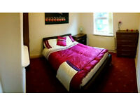 Cosy Double Room in Professional House Share, B13