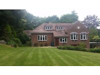 A detached 5 bedrooms house for rent
