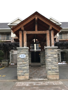 Collingwood Condo - 2 bedroom/2 bathroom with loft - $339,999