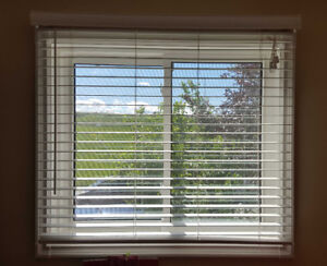 Great Condition Blinds with Accessories