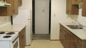 1 MONTH FREE!  Available  NOW -   2 Bedroom Apt.