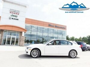 2013 BMW 3 Series 320i xDrive  - Low Mileage