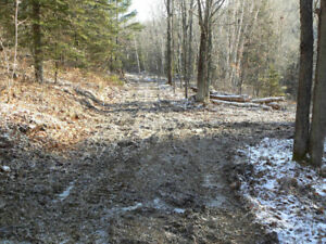 Affordable retreat lots with boat access to Mazinaw Lake
