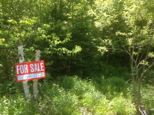 * REDUCED PRICE *  Beautiful Wooded/Vacant Lot in Cape Breton
