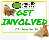 Cause for Critters   looking for Volunteers.