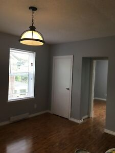 Newly renovated 1 bedroom