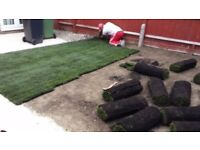 Turf specialist all service