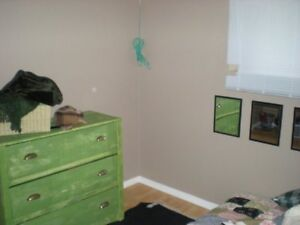 Very Clean Bright Basement Apartment All Inclusive