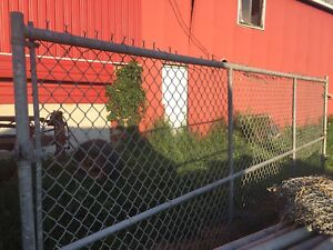 6' Galvanized Chain Link Fence