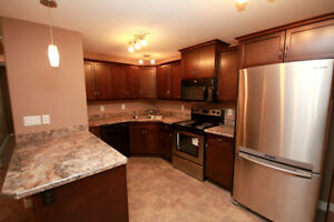 Newly Built 2 Bedroom Lower Level Suite Avail. Immediately