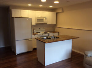 Brand new renovate 2 bed room suite for rent