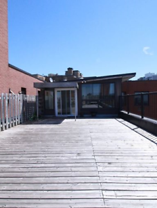 Fully renovated 3 BR Penthouse-$2495- Cote-des-Neiges-NDG
