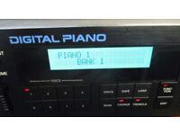 Roland MKS-20 MIDI digital piano. Rack module version of RD-1000. (MKS20) analogue FX Gospel, Elton.