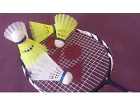 Private Badminton Coach - City of Southampton