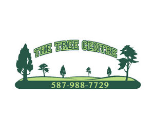 Landscaping services to trade for travel trailer