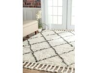 100% Wool Area Rug, brand new, made in India , half price