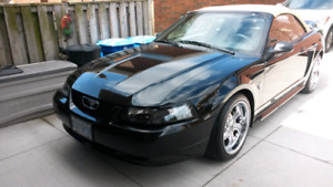 99 Mustang 35th anniversary edition mint 100% V6