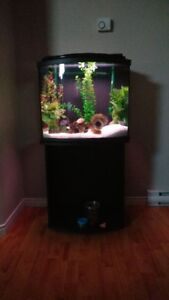 26 gallon aquarium fully equiped