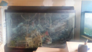 91 Gallon Tank and Decoration (For Sale)