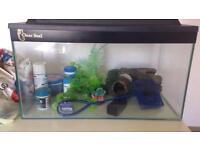 20L fish tank 🐟🐙🐡🐠
