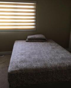 falcon ridge drive north east  room for rent
