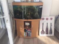Juwel Vision 180 Aquarium and Cabinet in Beech including fish!!! £150