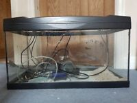 2ft fish tank, ready to set up!