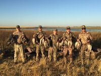 Waterfowl & Whitetail hunting guide required in Saskatchewan
