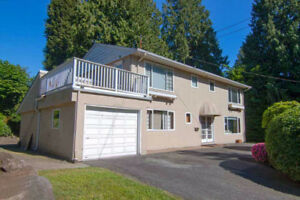 Gorgeous House in Ambleside WestVan