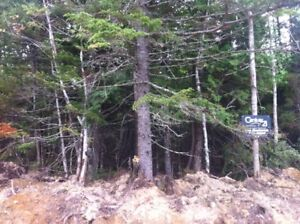 25 Acres Near St Stephen NB