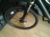 Mens Boss Stealth mountain bike