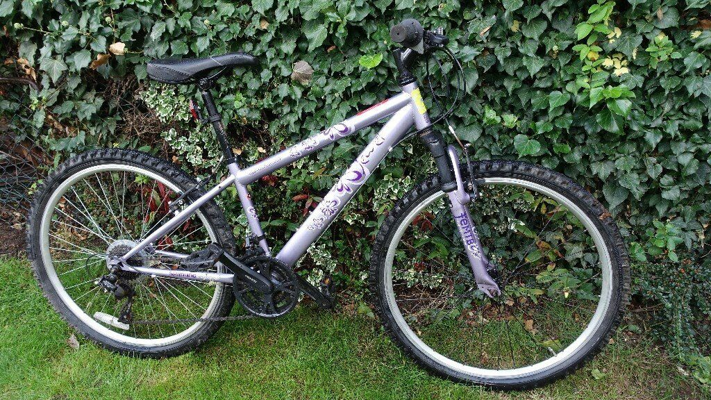 Purple Apollo Jewel Womens Mountain Bike In West Molesey Surrey