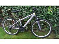 Purple Apollo Jewel Womens Mountain Bike